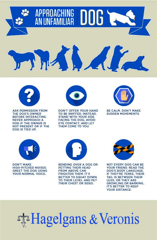 Infographic - Approaching an Unfamiliar Dog
